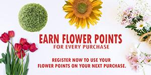 flower points new